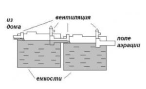 Схема септика из 2 еврокубов